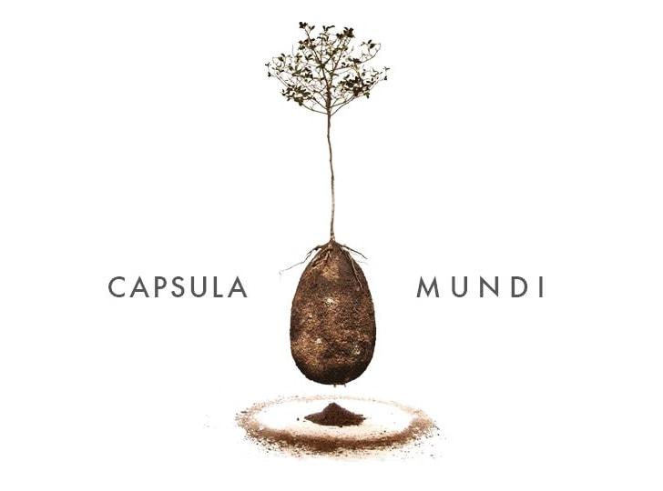 Capsula Mundi: un cimitero alternativo