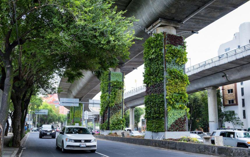 Giardini verticali a Città del Messico