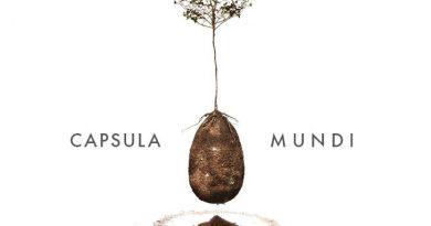 Capsula mundi