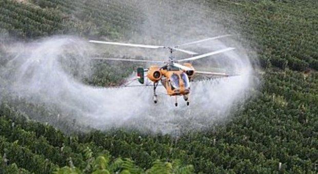 Elicottero che irrora di pesticidi dei vigneti in Veneto