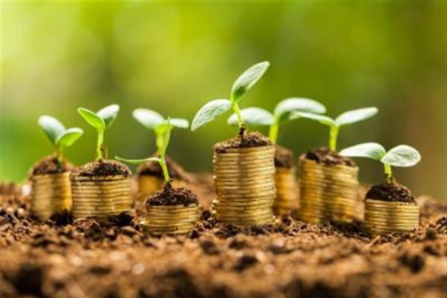 Finanza green