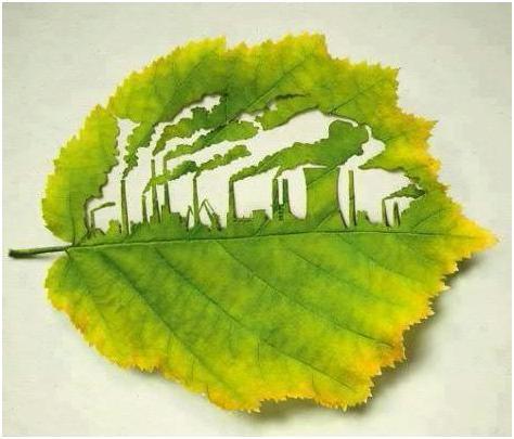 Foglia di albero con all'interno un disegno fatto a fabbriche che emettono inquinamento