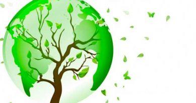 Mondo green fatto a forma di albero