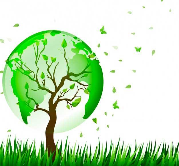 I singoli Stati ancora determinanti per l'ambiente