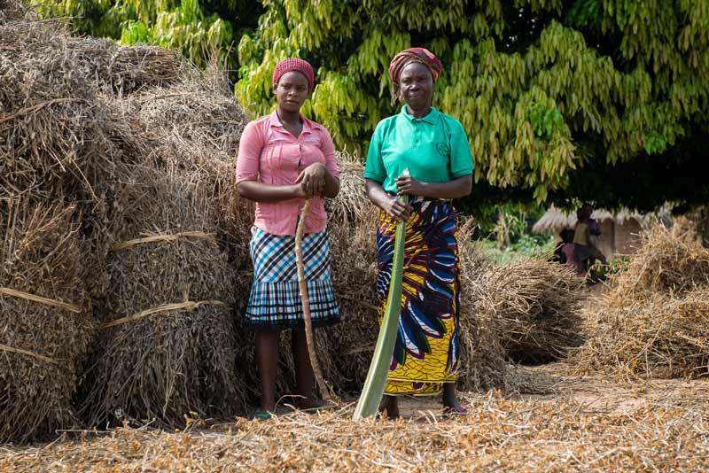 Lo Sviluppo agricolo in Nigeria passa per le minigrid