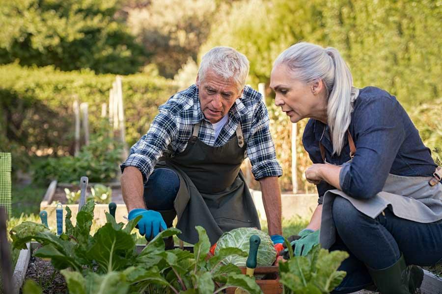 Economia circolare nell'agricoltura spagnola