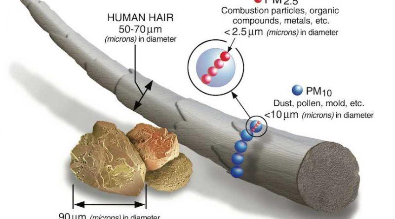 figura di spiegazione della grandezza dell'inquinamento dell'aria Pm 2.5 rispetto alla grandezza della polvere e del capello
